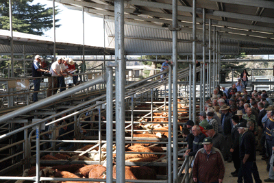 bairnsdale_special_store_sale_29aug2014_8841