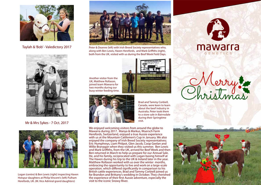 xmas_mawarra_newsletter_2017_final_web-1